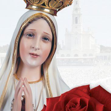 """""""Eine rote Rose für Fatima"""""""